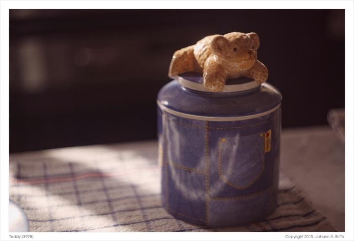 Teddy (3998)
